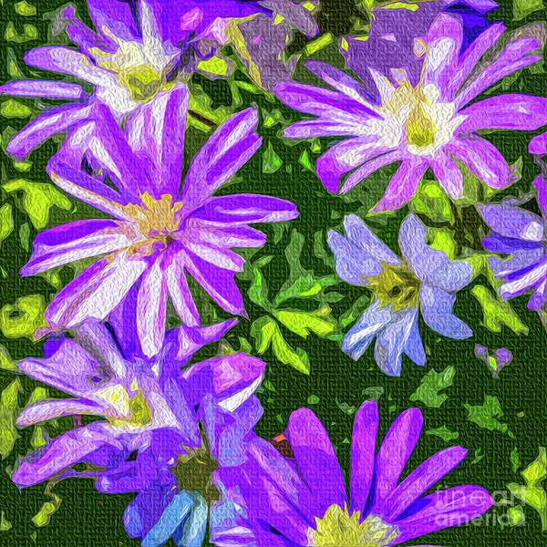 Photograph - Blue Daisies by Nigel Dudson
