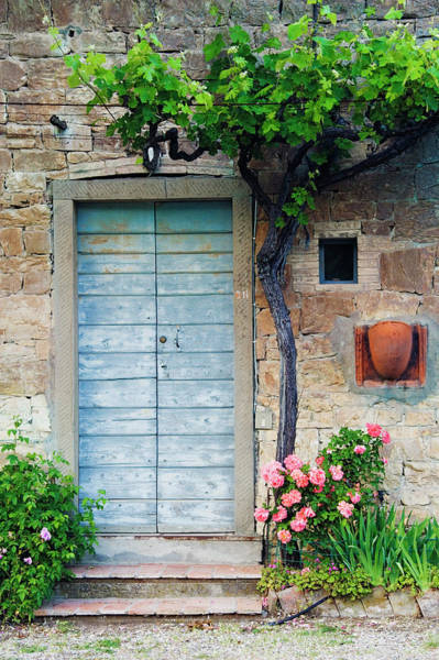 Entrance Photograph - Blue Door, Grapevine And Roses by Jeremy Woodhouse
