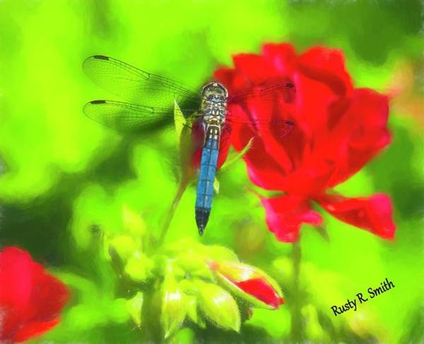 Digital Art - Blue Dragonfly On A Red Flower. by Rusty R Smith