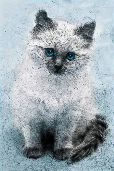 Curiosity Painting - Blue Eyes Kitten by ArtMarketJapan