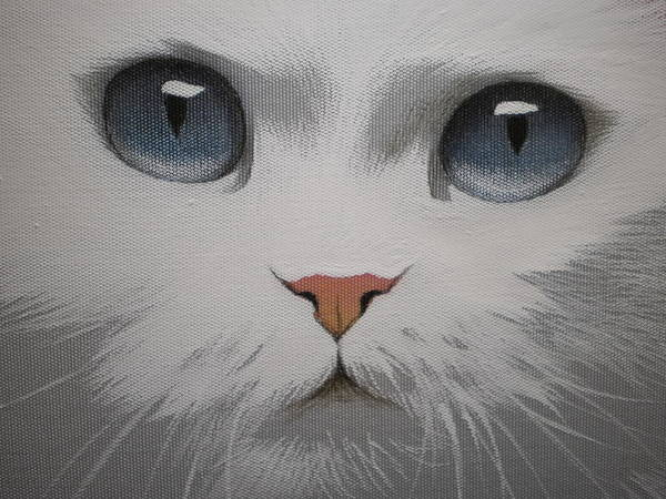 Painting - Blue Eyes Of White Cat  by Alina Oseeva