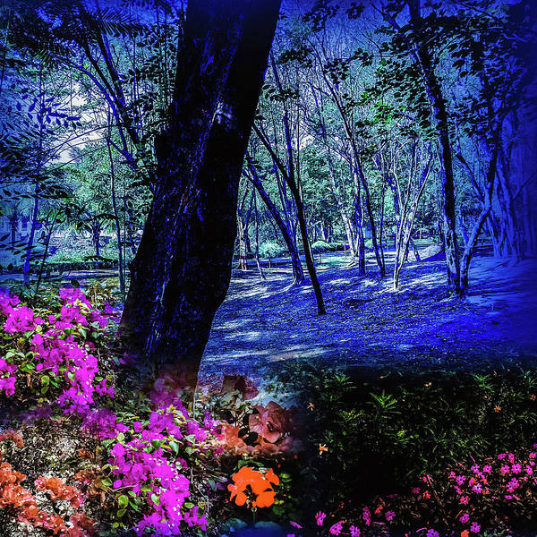 Photograph - Blue Gleam by AE collections