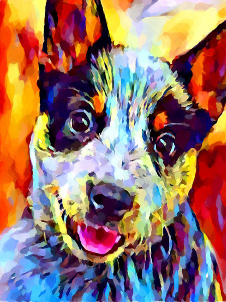 Wall Art - Painting - Blue Heeler Puppy by Chris Butler