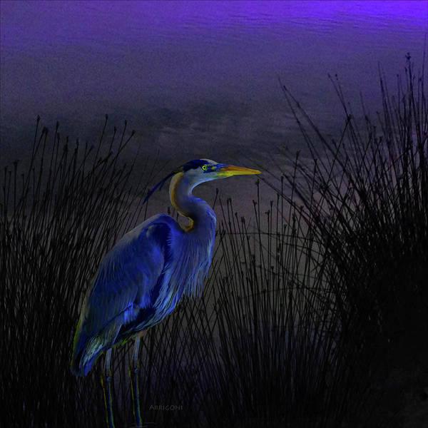 Painting - Blue Heron by David Arrigoni