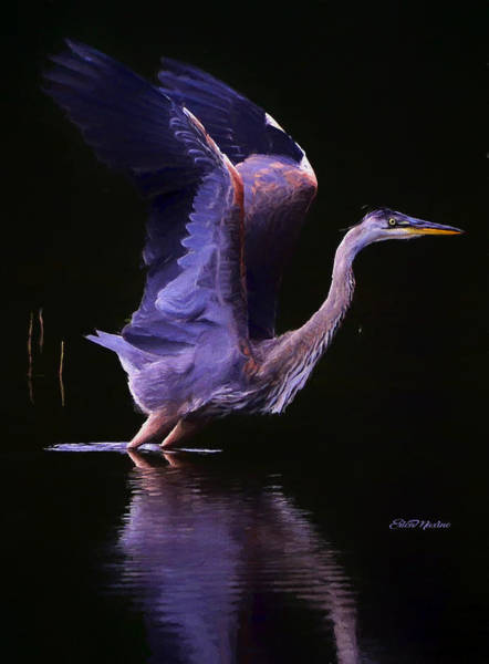 Painting - Blue Heron Take Off - Painting by Ericamaxine Price