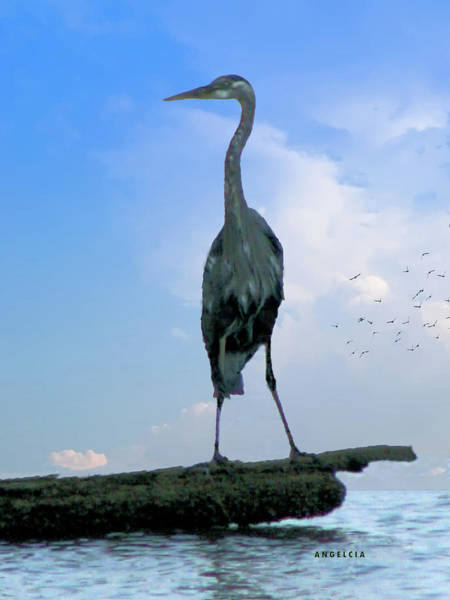 Photograph - Blue Heron Watch by Angelcia Wright