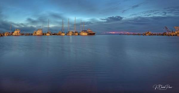 Photograph - Blue Hour by David Pine