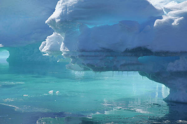 Bleached Photograph - Blue Ice, Greenland Sea, Arctic Ocean by Raimund Linke