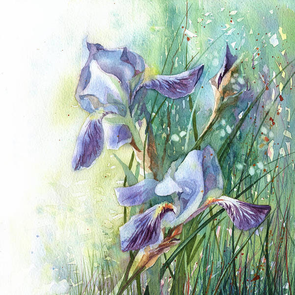 Painting - Blue Irises Fairytale by Ina Petrashkevich