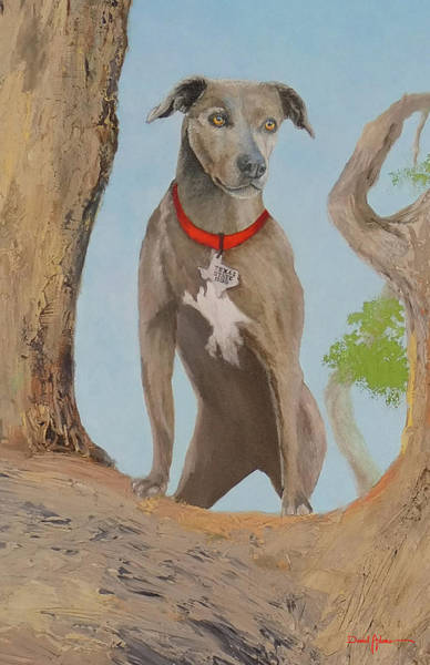 Painting - Blue Lacey Dog by Daniel Adams