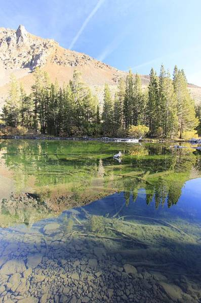 Photograph - Blue Lake Dawning by Sean Sarsfield