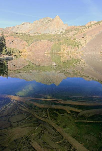 Photograph - Blue Lake Dimensions At Dawn by Sean Sarsfield