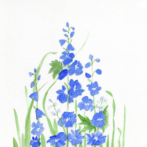 Painting - Blue Larkspur  by Laurie Rohner