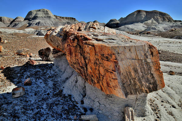 Photograph - Blue Mesa Petrified Pedestal  by Ray Mathis