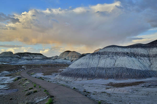 Photograph - Blue Mesa Trail At Sunset In Petrified Forest Np by Ray Mathis