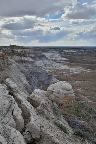 Photograph - Blue Mesa Trail In Petrified Forest Np by Ray Mathis