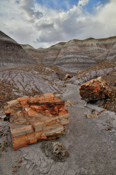 Photograph - Blue Mesa Wash In Petrified Forest by Ray Mathis