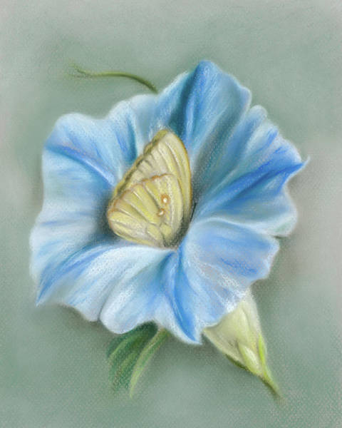 Pastel - Blue Morning Glory With Yellow Butterfly by MM Anderson
