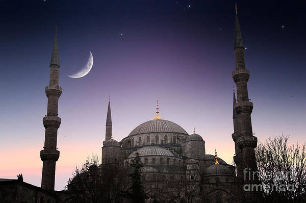 East Asia Wall Art - Photograph - Blue Mosque - Istanbul  Turkey by Plusone