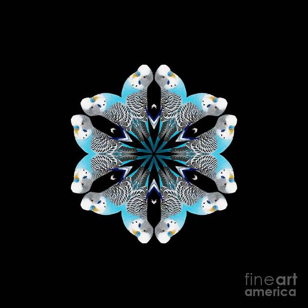 Digital Art - Blue Parakeet Mandala by Rachel Hannah