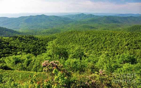 Photograph - Blue Ridge Mountain Overlook by Kevin McCarthy