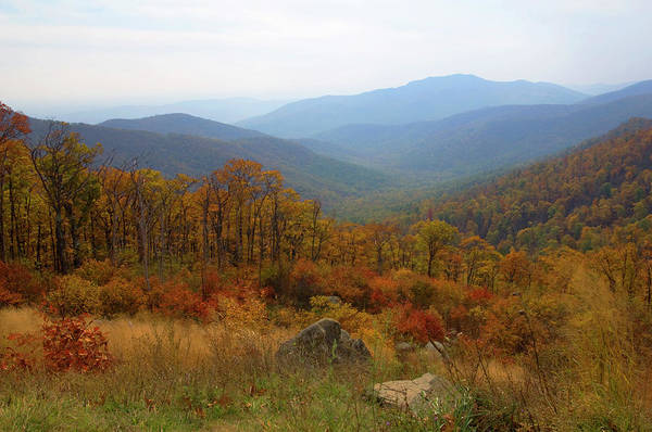 Wall Art - Photograph - Blue Ridge Mountains In Colorful Autumn by Jpecha