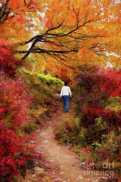 Wall Art - Digital Art - Blue Ridge Parkway Autumn Hike Ap by Dan Carmichael