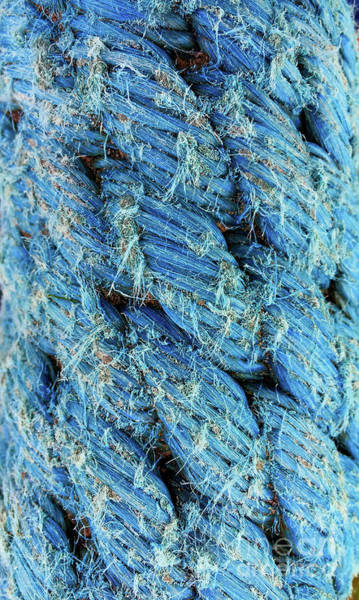Wall Art - Photograph - Blue Rope Detail by Tom Gowanlock