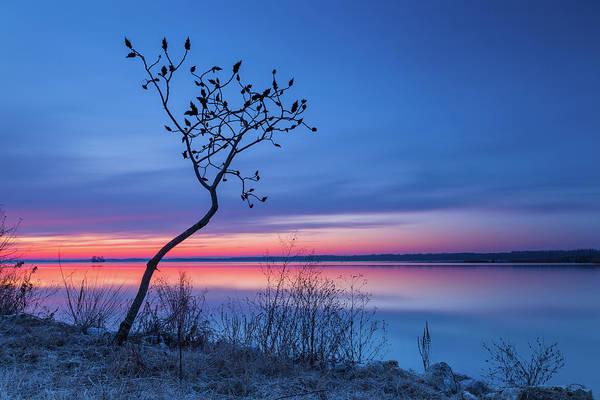 Photograph - Blue Silence by Davor Zerjav