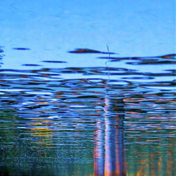 Photograph - Blue Snake by Robert FERD Frank