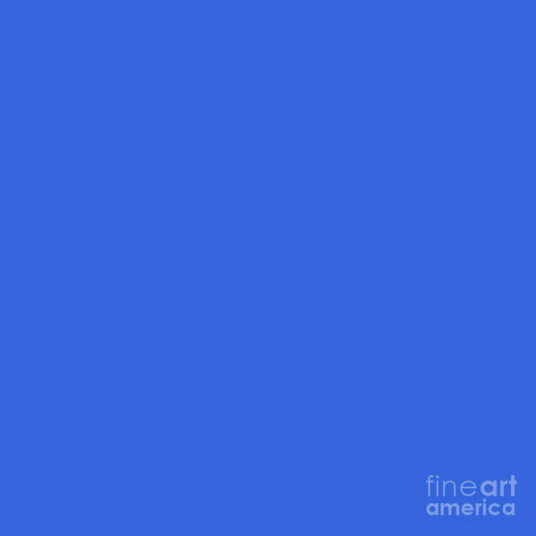 Digital Art - Blue Solid Matte by Sharon Mau
