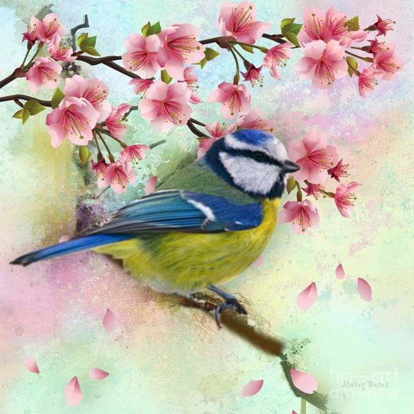 Mixed Media - Blue Tit And Falling Blossom by Morag Bates