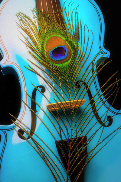 Wall Art - Photograph - Blue Violin And Peacock Feather by Garry Gay