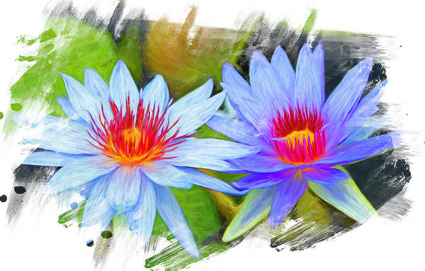 Wall Art - Photograph - Blue Water Lilies Painted 2 by Judy Vincent