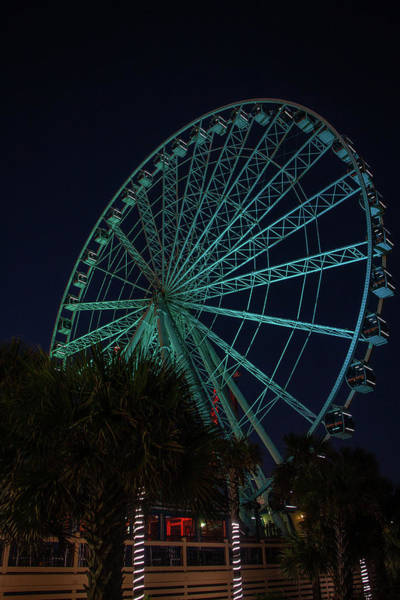 Photograph - Blue Wheel by Ree Reid
