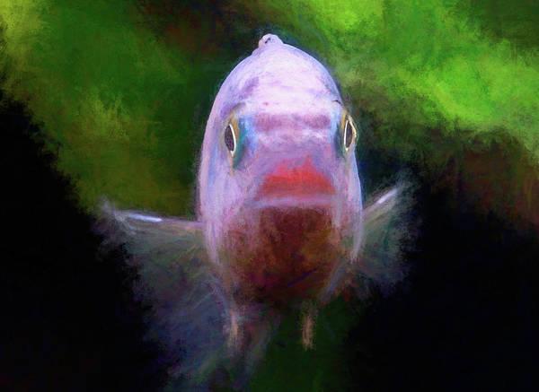 Digital Art - Blue Zebra Headshot Chalk Smudge by Don Northup