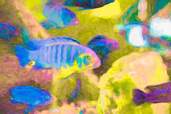 Digital Art - Blue Zebra Lake Malawi Neon by Don Northup