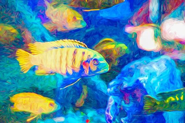Digital Art - Blue Zebra Lake Malawi Neon Yellow by Don Northup