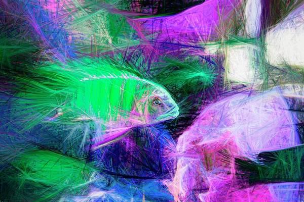 Digital Art - Blue Zebra Lake Malawi Pastel Green by Don Northup