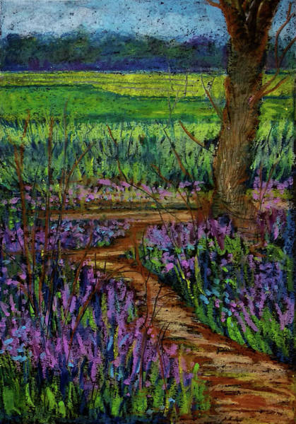 Wall Art - Drawing - Bluebell Pathway by Asha Sudhaker Shenoy