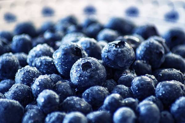 Photograph - Blueberries by Top Wallpapers