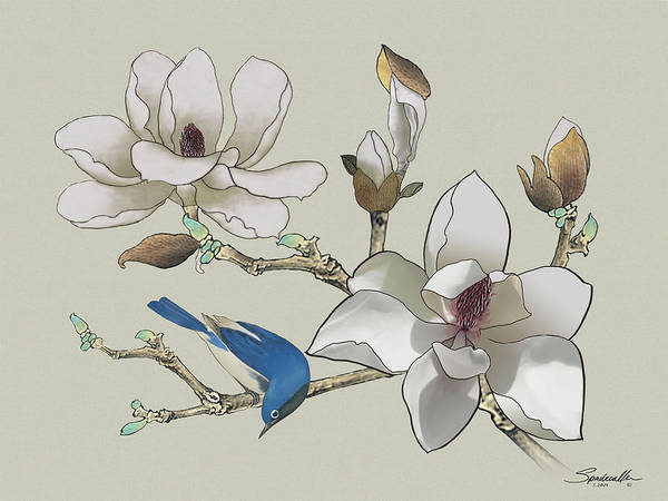 Wall Art - Painting - Bluebird And Magnolia by Spadecaller