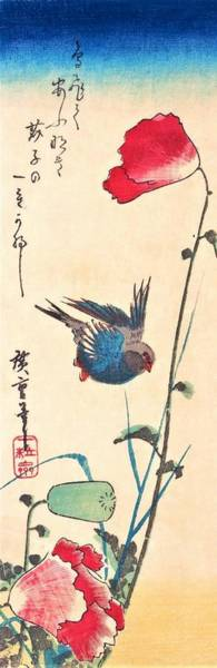 Poppie Painting - Bluebird And Poppies by Utagawa Hiroshige