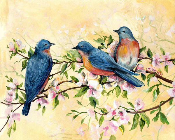 Painting - Bluebird Blossoms by Sheri Jo Posselt