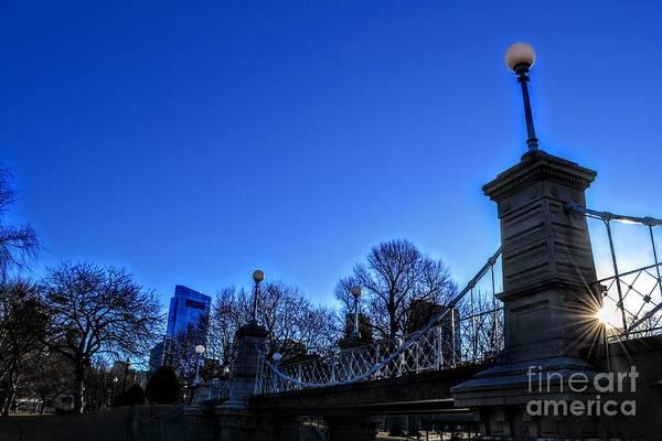 Wall Art - Photograph - Bluebird - Boston Common, Boston Massachusetts by Dave Pellegrini
