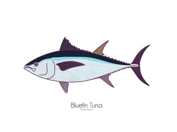 Wall Art - Digital Art - Bluefin Tuna by Kevin Putman