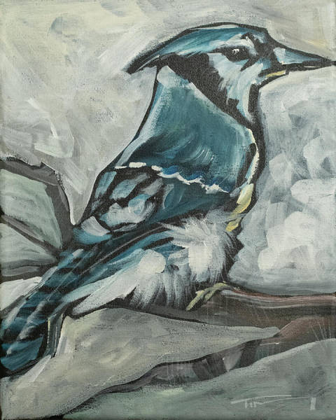 Painting - Bluejay by Tim Nyberg