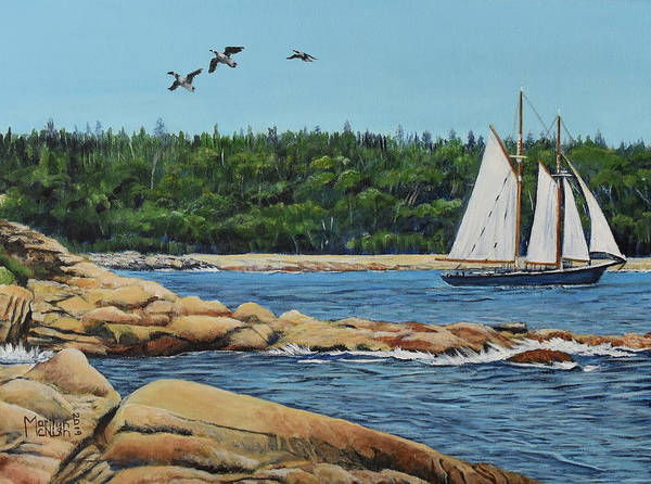 Painting - Bluenose II Sailing by Marilyn McNish