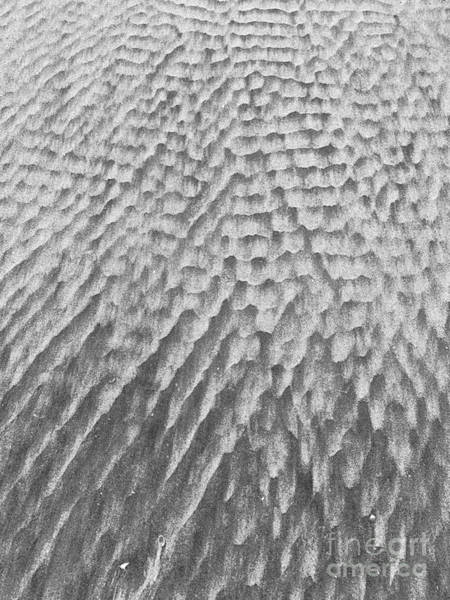 Wall Art - Photograph - Blurred Lines In Sand by Linda Covino