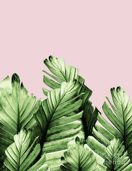 Banana Leaf Mixed Media - Blush Banana Leaves Dream #1 #tropical #decor #art by Anita Bella Jantz